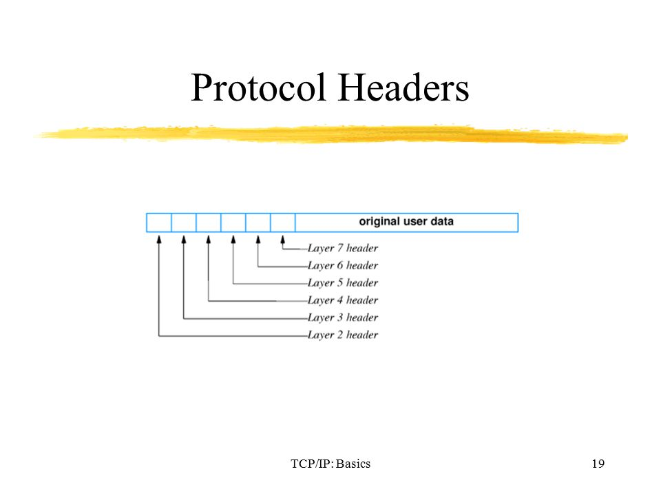 TCP/IP: Basics19 Protocol Headers