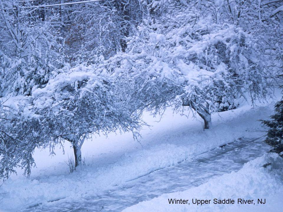 Winter, Upper Saddle River, NJ