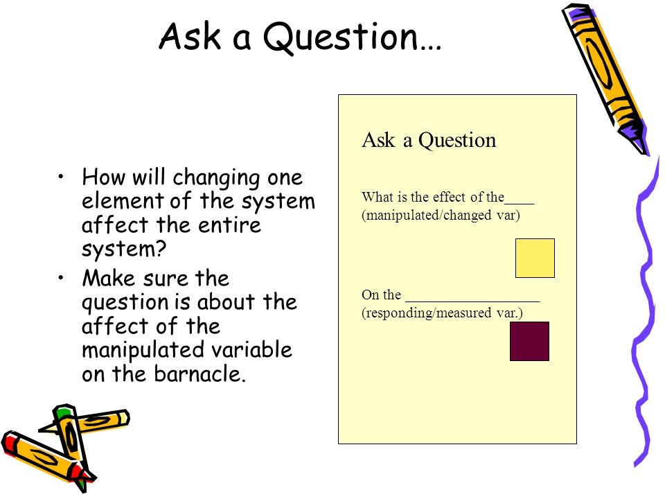 Ask a Question… How will changing one element of the system affect the entire system.