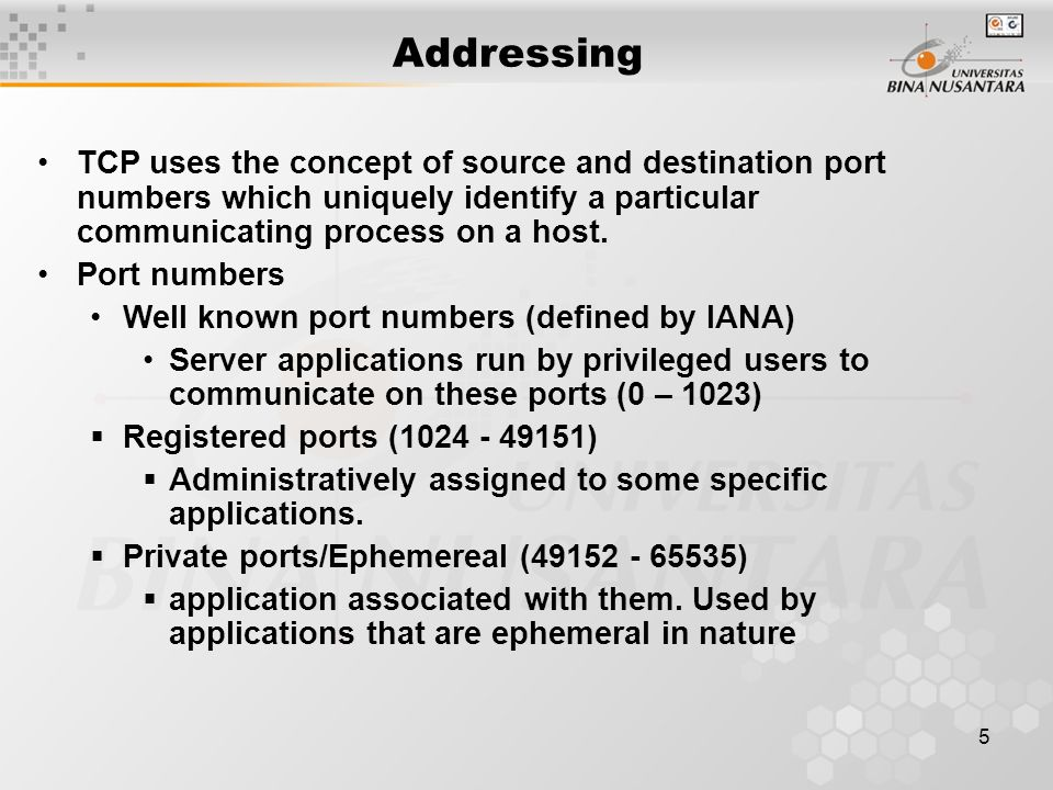 5 Addressing TCP uses the concept of source and destination port numbers which uniquely identify a particular communicating process on a host.