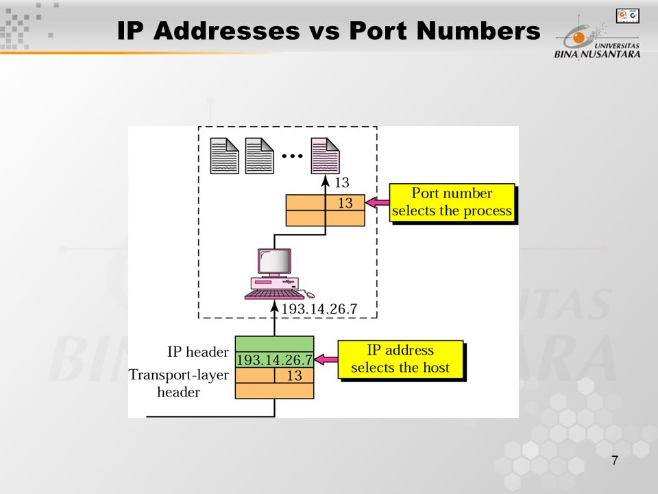 7 IP Addresses vs Port Numbers