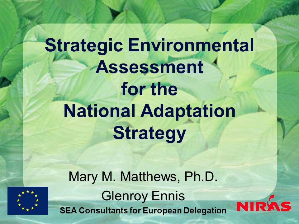Strategic Environmental Assessment for the National Adaptation Strategy Mary M.
