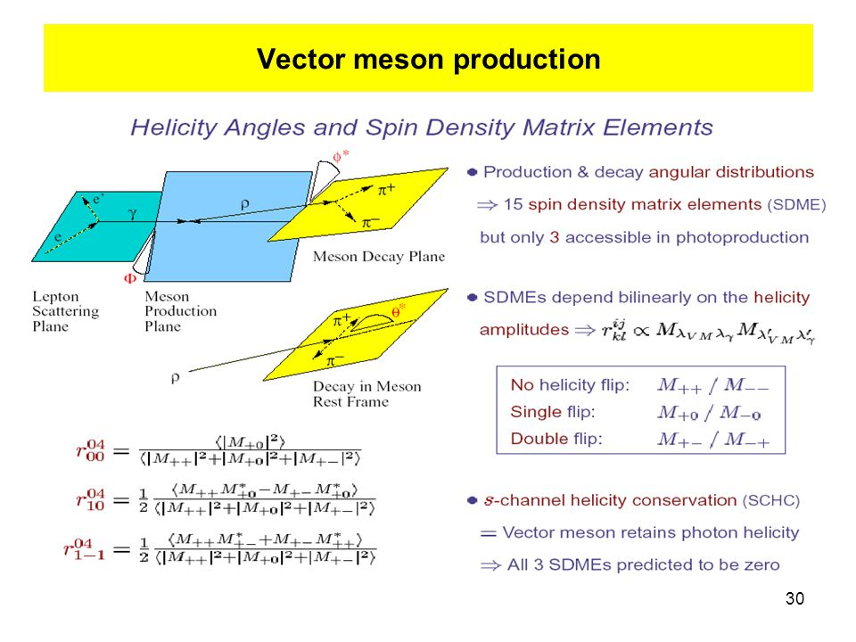 30 Vector meson production
