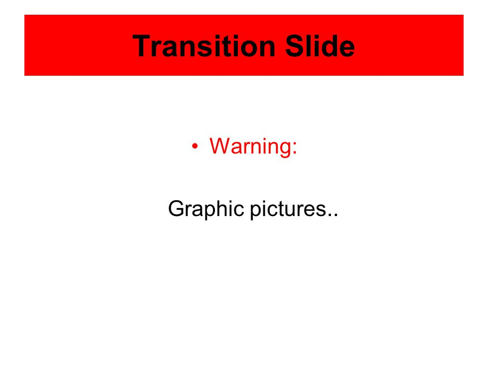 Transition Slide Warning: Graphic pictures..