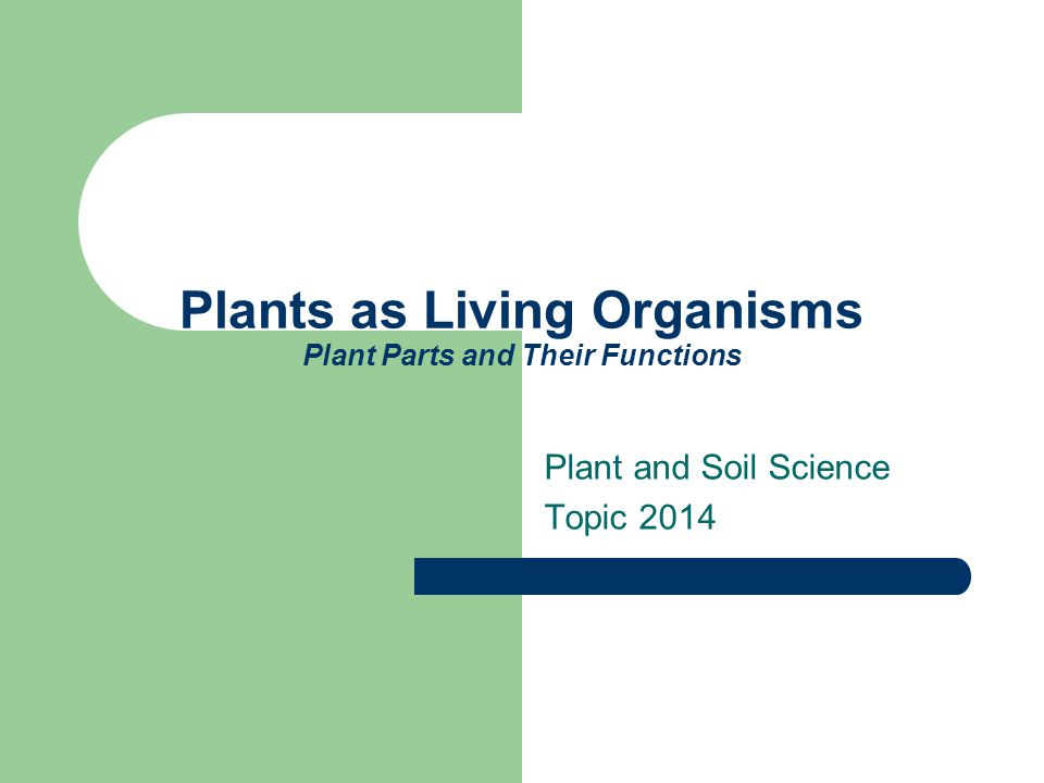 Plants as Living Organisms Plant Parts and Their Functions Plant and Soil Science Topic 2014