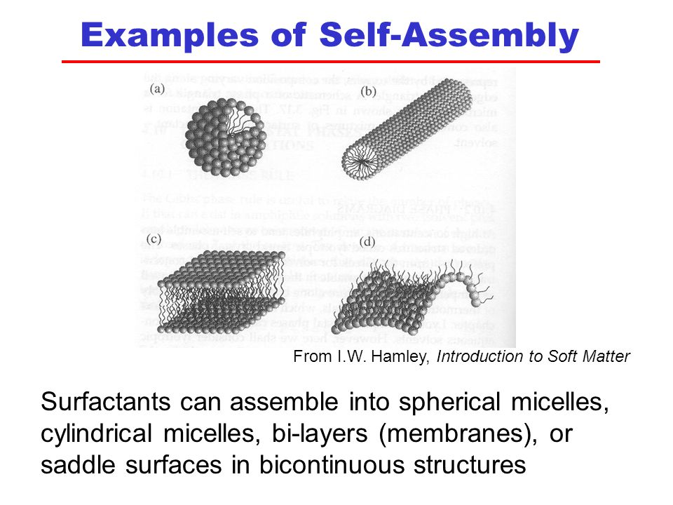 Examples of Self-Assembly Surfactants can assemble into spherical micelles, cylindrical micelles, bi-layers (membranes), or saddle surfaces in bicontinuous structures From I.W.
