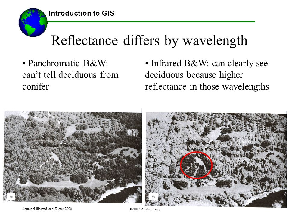 ©2007 Austin Troy Reflectance differs by wavelength Introduction to GIS Panchromatic B&W: can't tell deciduous from conifer Source :Lillesand and Kiefer 2000 Infrared B&W: can clearly see deciduous because higher reflectance in those wavelengths