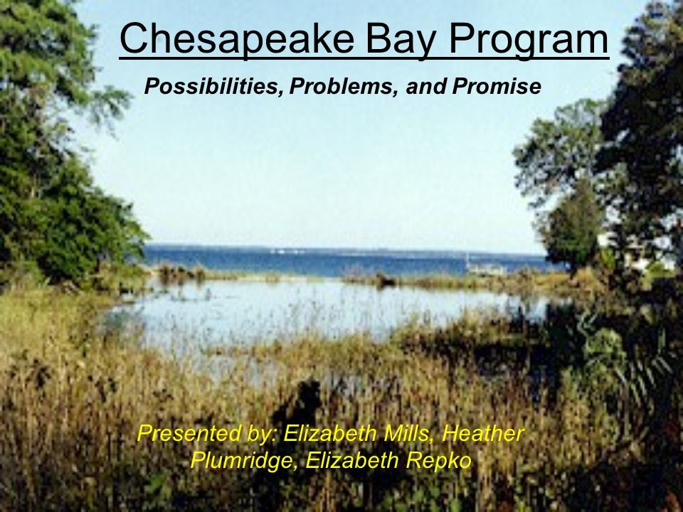 Chesapeake Bay Program Presented by: Elizabeth Mills, Heather Plumridge, Elizabeth Repko Possibilities, Problems, and Promise