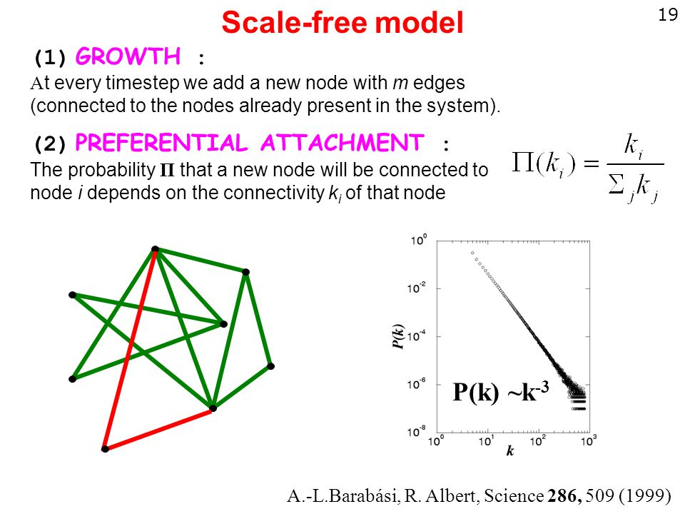 19 Scale-free model (1) GROWTH : A t every timestep we add a new node with m edges (connected to the nodes already present in the system).