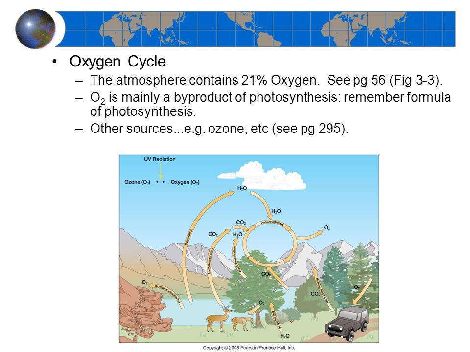 Oxygen Cycle –The atmosphere contains 21% Oxygen. See pg 56 (Fig 3-3).