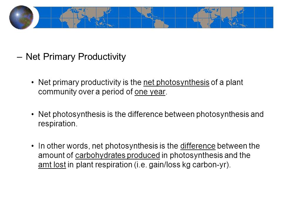 –Net Primary Productivity Net primary productivity is the net photosynthesis of a plant community over a period of one year.