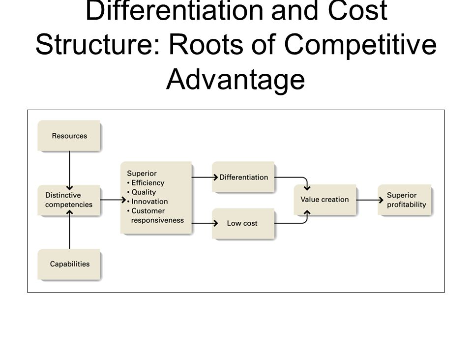 Differentiation and Cost Structure: Roots of Competitive Advantage