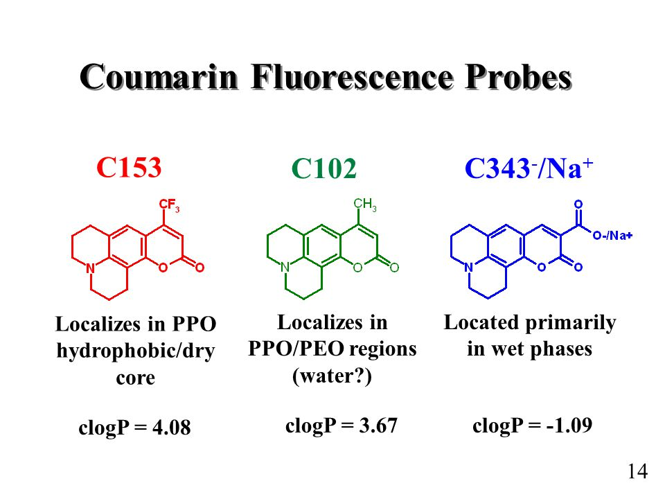 Coumarin Fluorescence Probes Localizes in PPO hydrophobic/dry core Located primarily in wet phases Localizes in PPO/PEO regions (water ) clogP = 4.08 clogP = 3.67clogP = C153 C102 C343 - /Na + 14