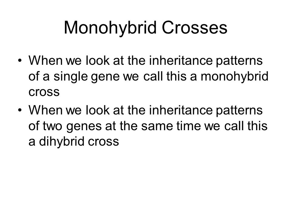 Monohybrid Crosses When we look at the inheritance patterns of a single gene we call this a monohybrid cross When we look at the inheritance patterns of two genes at the same time we call this a dihybrid cross