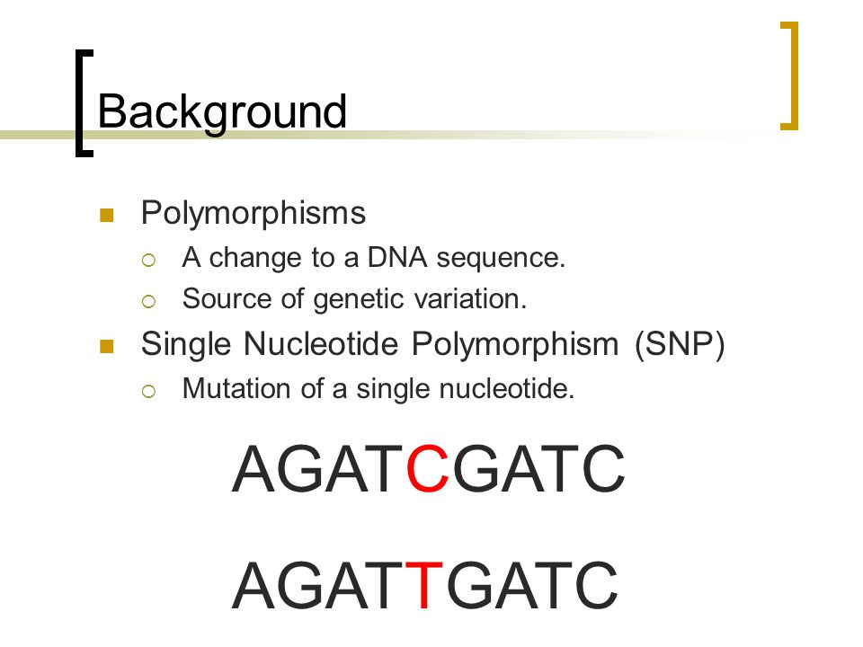 Background Polymorphisms  A change to a DNA sequence.