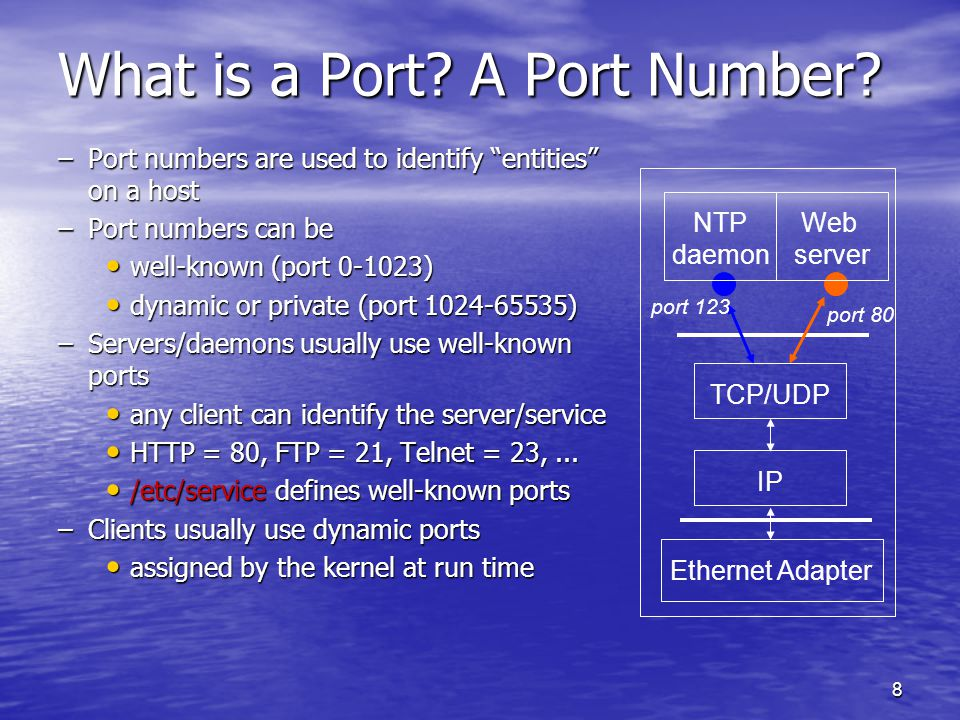 8 What is a Port. A Port Number.