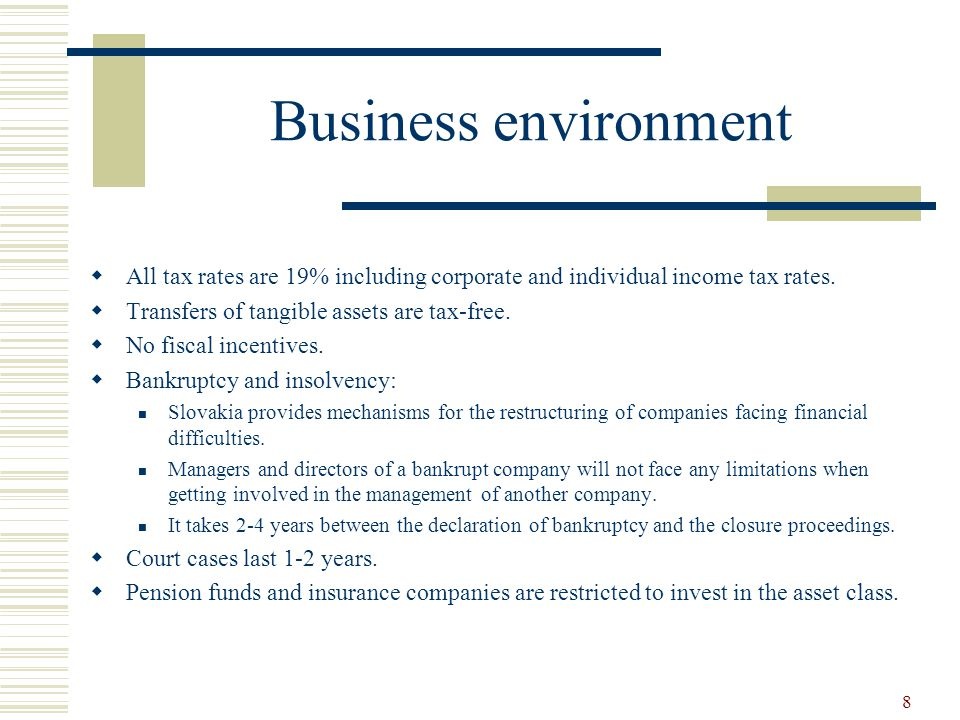 8 Business environment  All tax rates are 19% including corporate and individual income tax rates.
