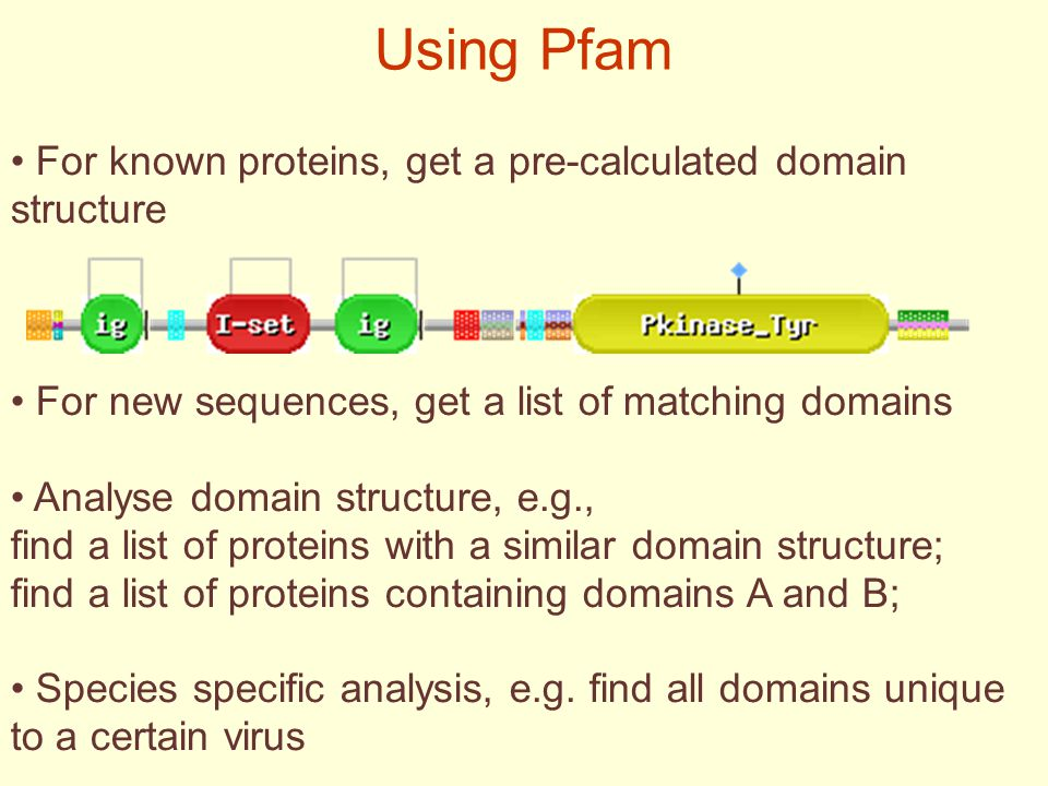 Using Pfam For known proteins, get a pre-calculated domain structure For new sequences, get a list of matching domains Analyse domain structure, e.g., find a list of proteins with a similar domain structure; find a list of proteins containing domains A and B; Species specific analysis, e.g.