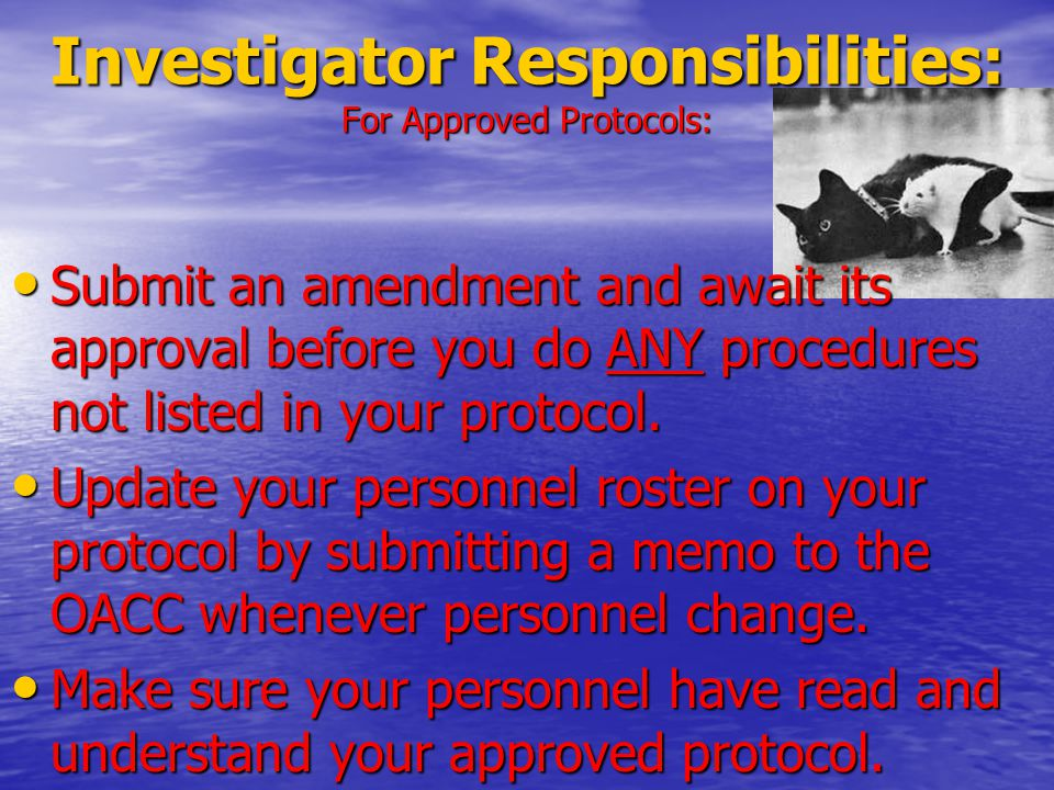 Submit an amendment and await its approval before you do ANY procedures not listed in your protocol.