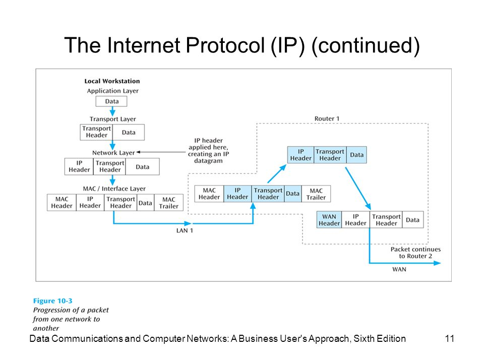 Data Communications and Computer Networks: A Business User s Approach, Sixth Edition11 The Internet Protocol (IP) (continued)