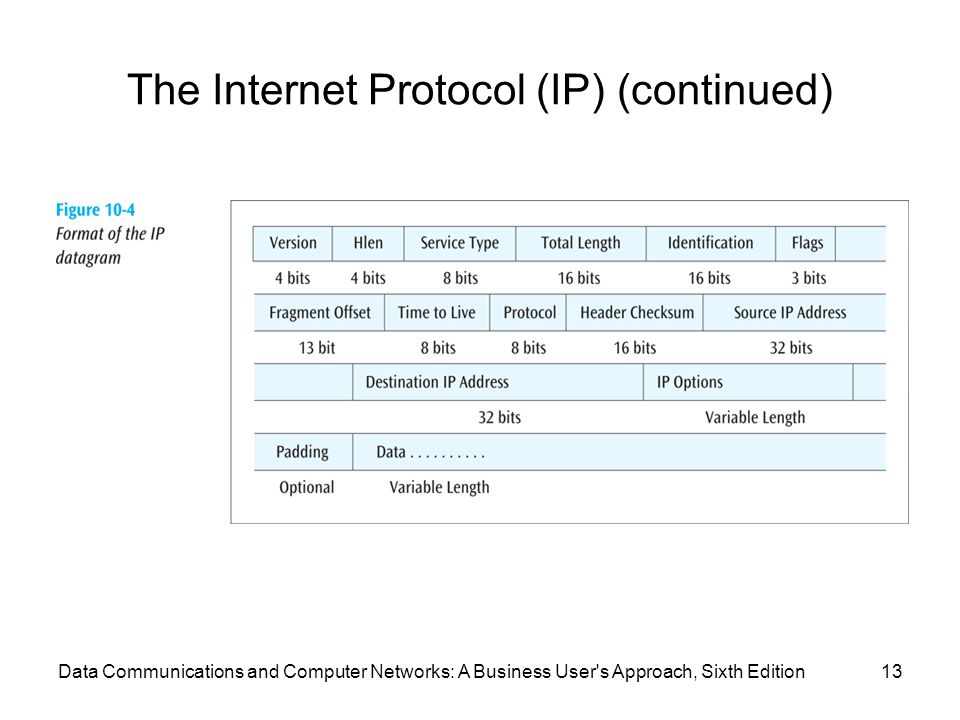 Data Communications and Computer Networks: A Business User s Approach, Sixth Edition13 The Internet Protocol (IP) (continued)
