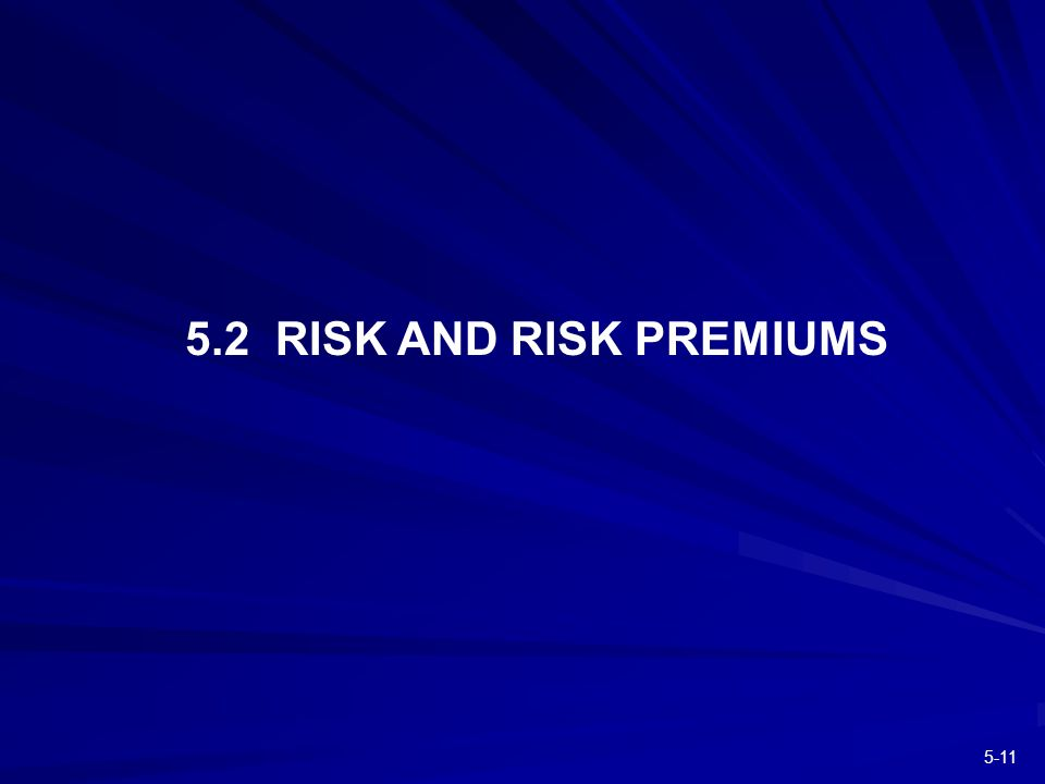 RISK AND RISK PREMIUMS