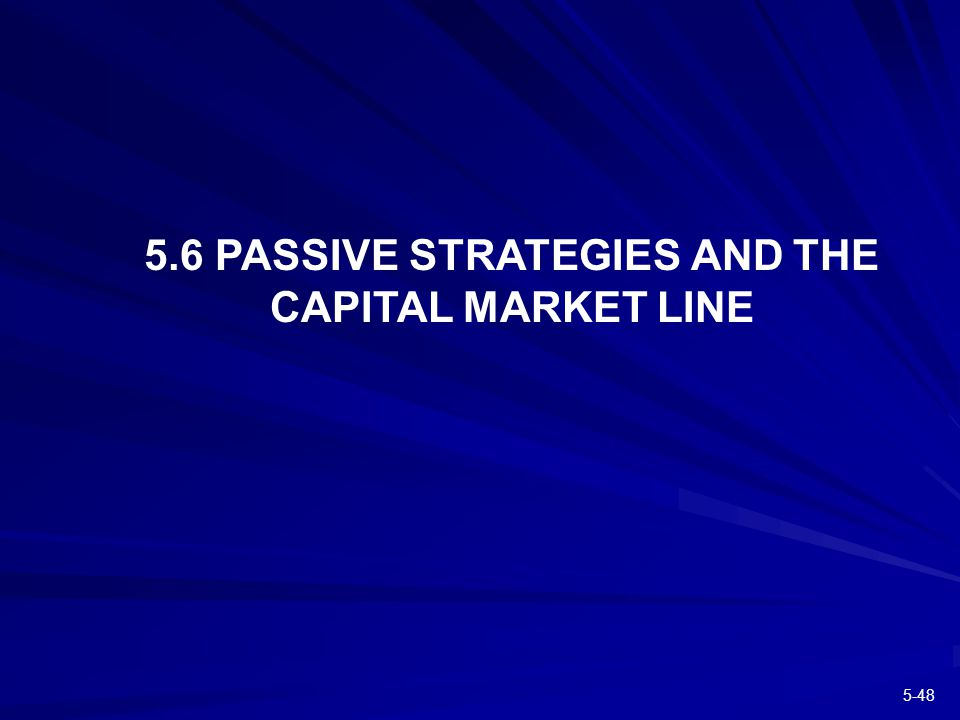 PASSIVE STRATEGIES AND THE CAPITAL MARKET LINE