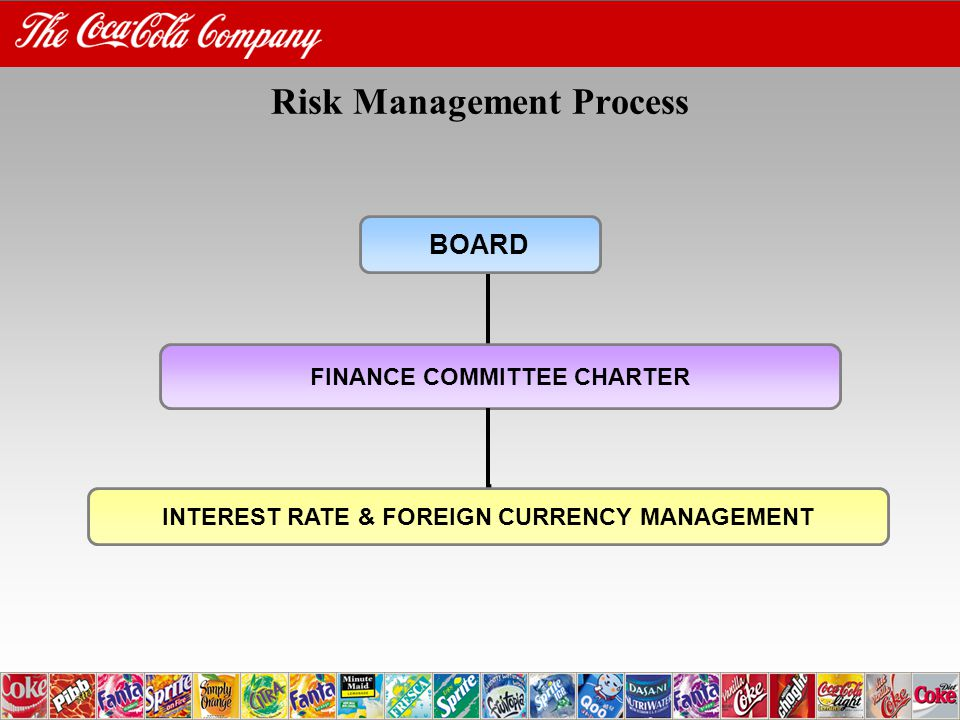 Risk Management Process BOARD FINANCE COMMITTEE CHARTER INTEREST RATE & FOREIGN CURRENCY MANAGEMENT