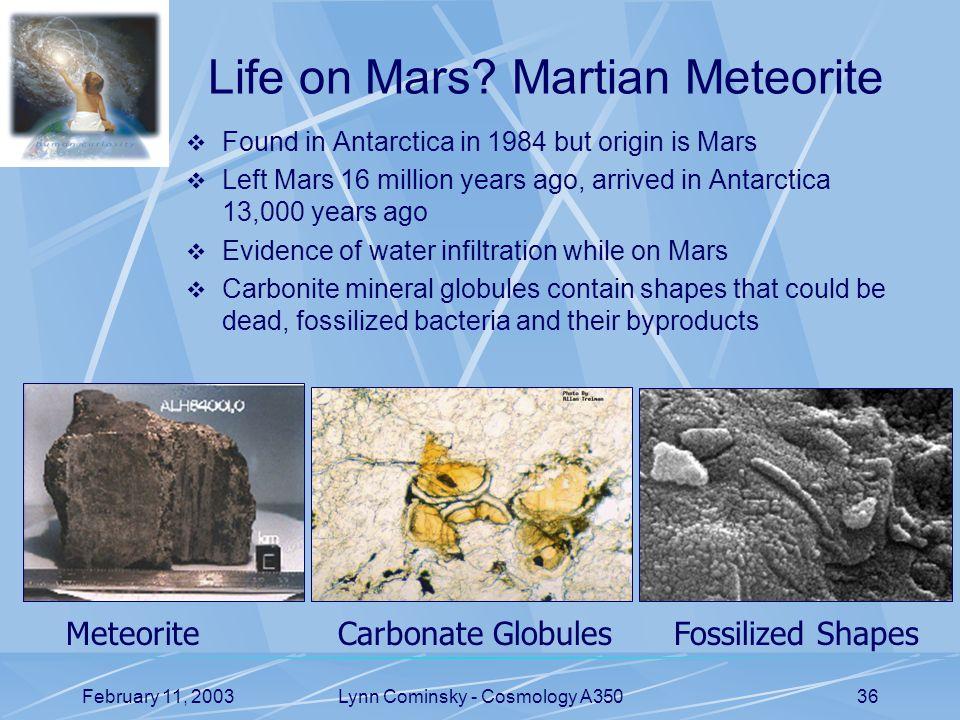 February 11, 2003Lynn Cominsky - Cosmology A35036 Life on Mars.