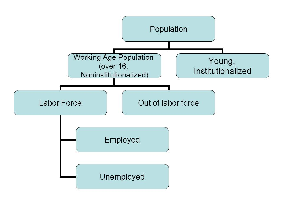 Population Working Age Population (over 16, Noninstitutionalized) Labor Force Employed Unemployed Out of labor force Young, Institutionalized