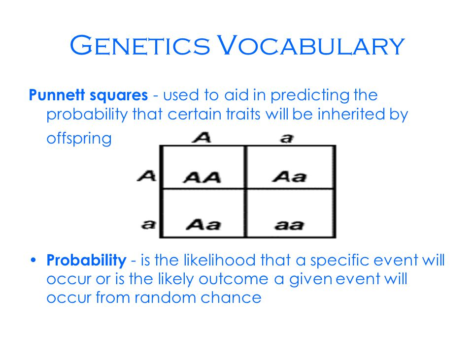 Genetics Vocabulary Punnett squares - used to aid in predicting the probability that certain traits will be inherited by offspring Probability - is the likelihood that a specific event will occur or is the likely outcome a given event will occur from random chance