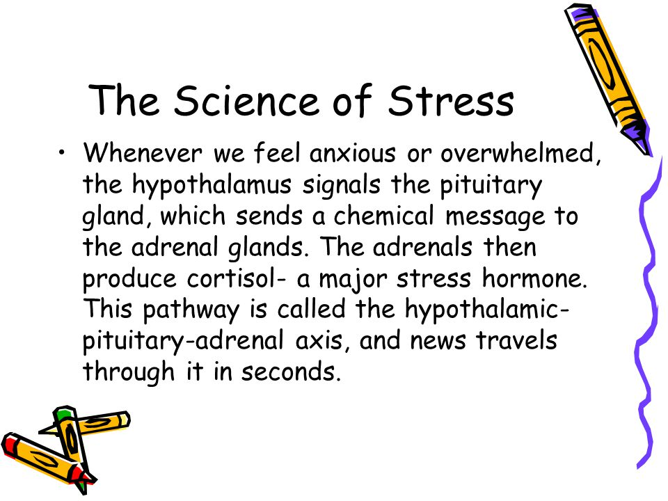 The Science of Stress Whenever we feel anxious or overwhelmed, the hypothalamus signals the pituitary gland, which sends a chemical message to the adrenal glands.