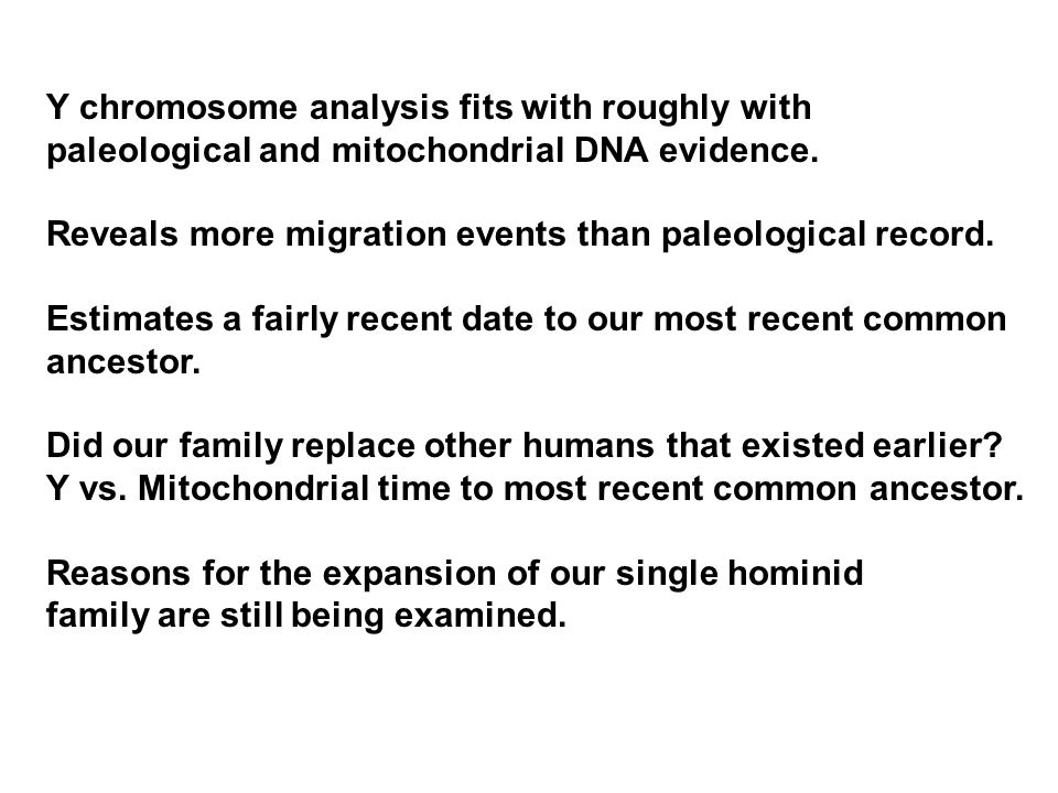 Y chromosome analysis fits with roughly with paleological and mitochondrial DNA evidence.