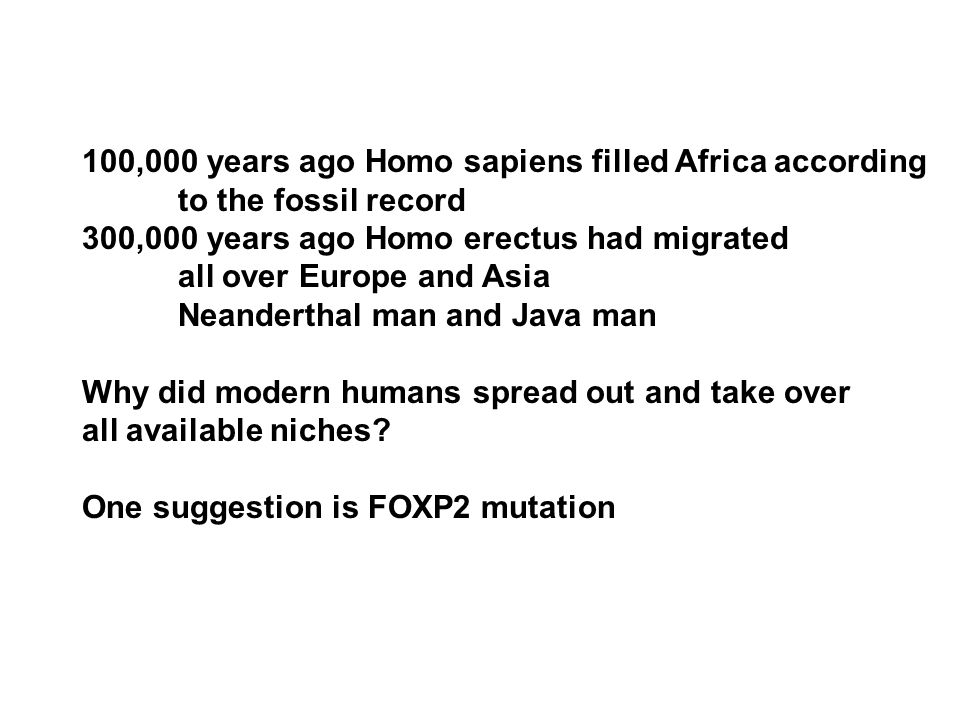 100,000 years ago Homo sapiens filled Africa according to the fossil record 300,000 years ago Homo erectus had migrated all over Europe and Asia Neanderthal man and Java man Why did modern humans spread out and take over all available niches.