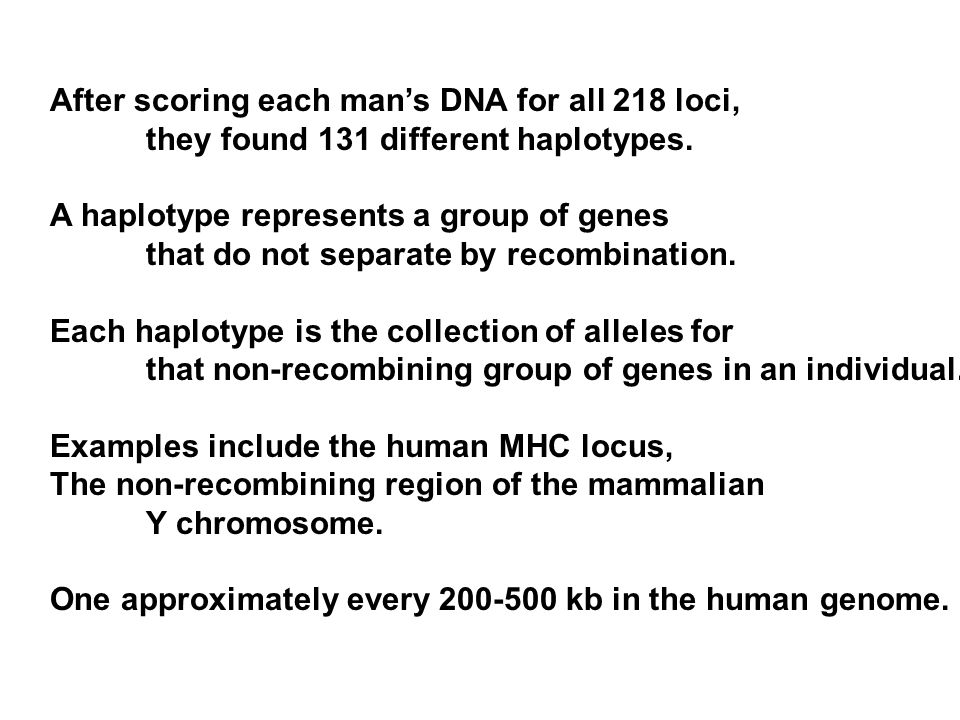 After scoring each man's DNA for all 218 loci, they found 131 different haplotypes.