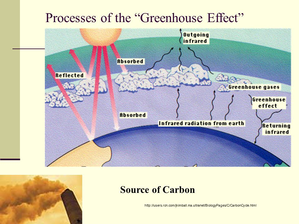 Processes of the Greenhouse Effect Source of Carbon