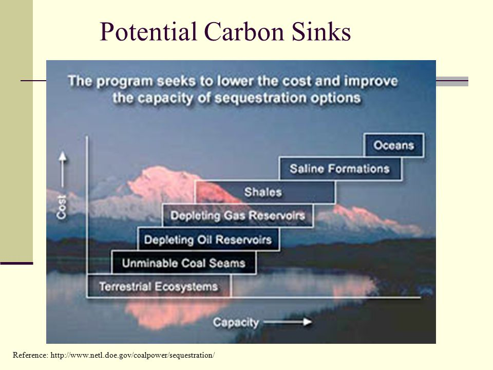 Reference:   Potential Carbon Sinks