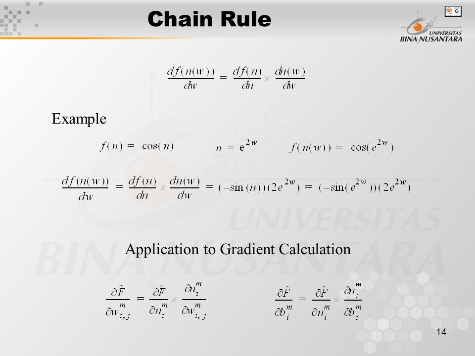 14 Chain Rule Example Application to Gradient Calculation