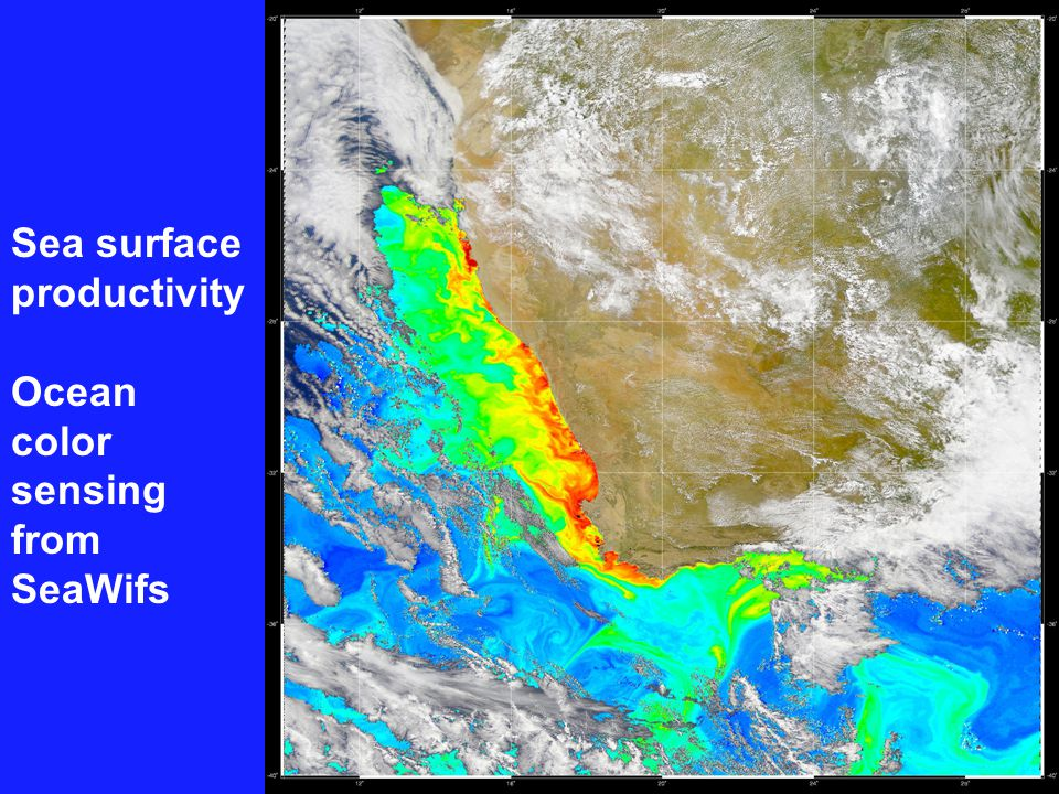 Sea surface productivity Ocean color sensing from SeaWifs