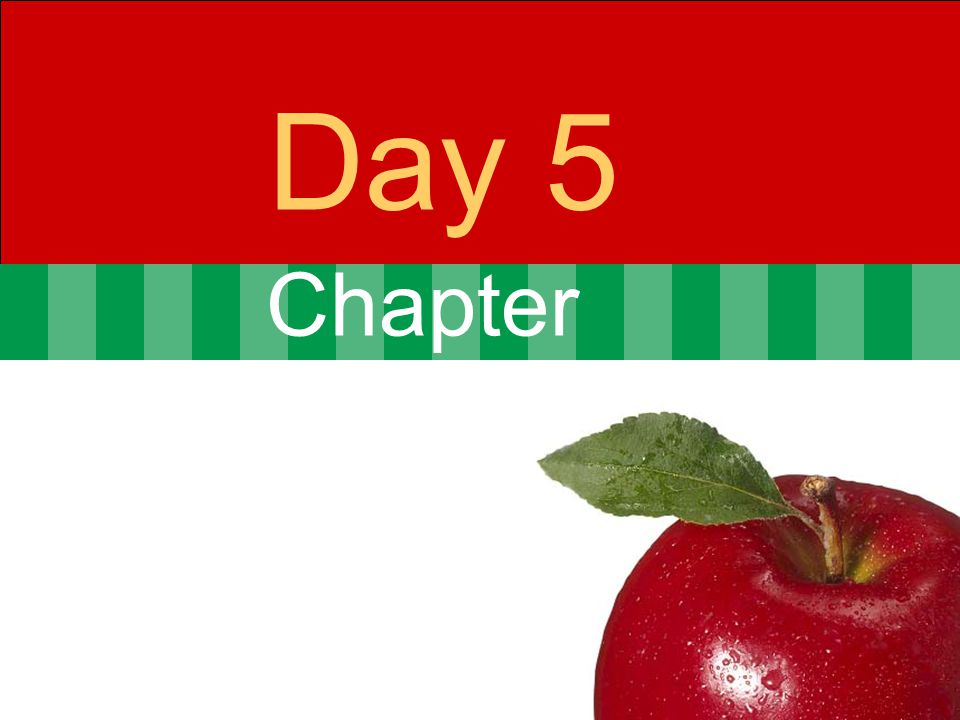 Chapter Day 5