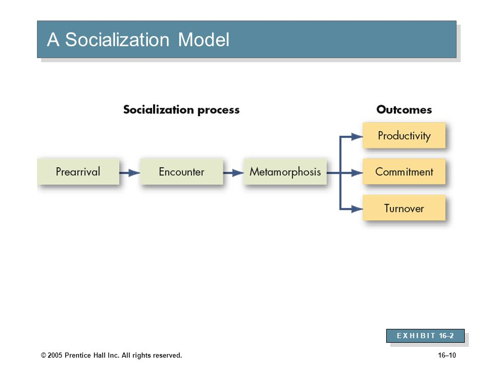 © 2005 Prentice Hall Inc. All rights reserved.16–10 A Socialization Model E X H I B I T 16–2