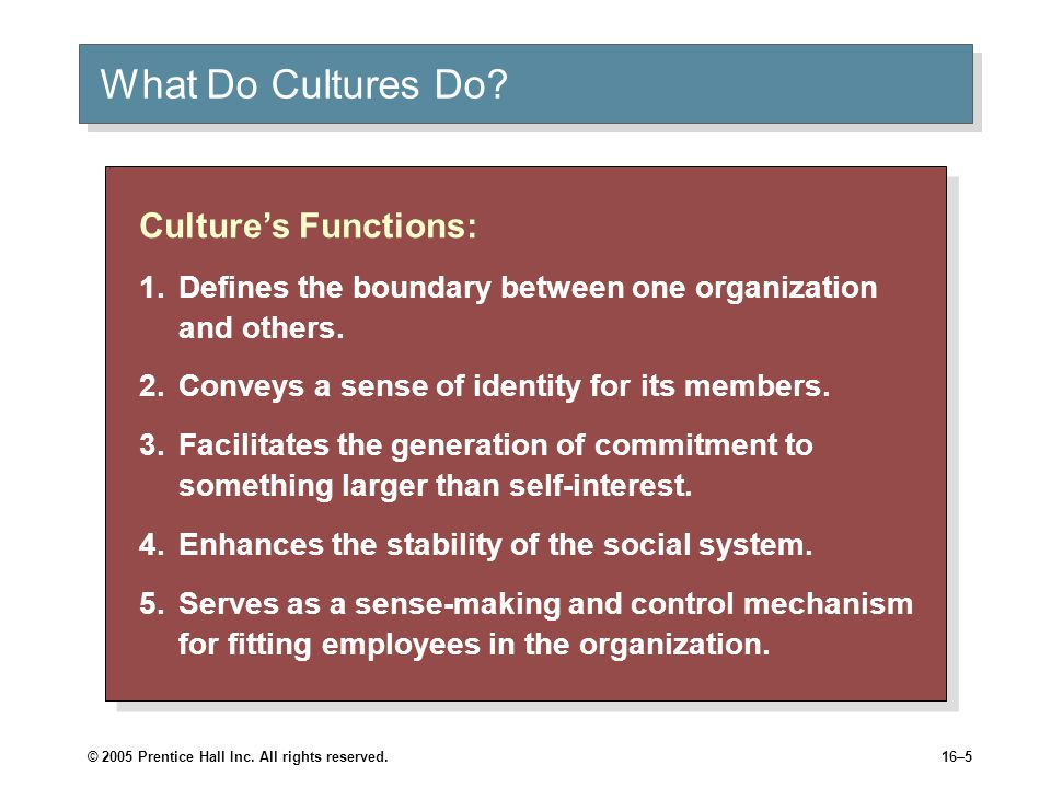 © 2005 Prentice Hall Inc. All rights reserved.16–5 What Do Cultures Do.