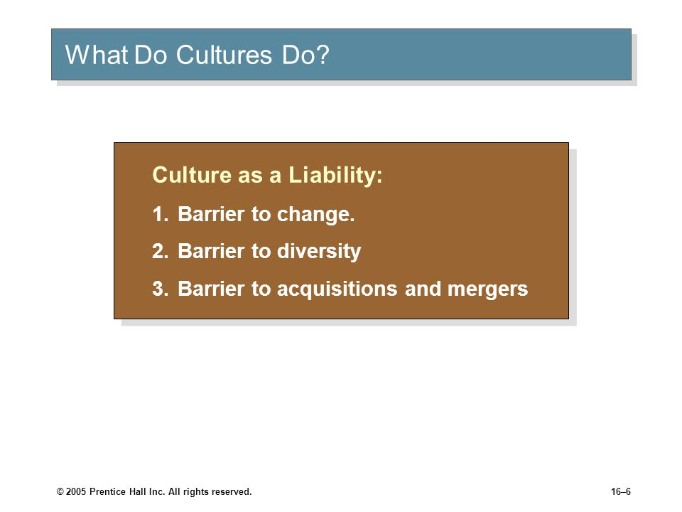 © 2005 Prentice Hall Inc. All rights reserved.16–6 What Do Cultures Do.