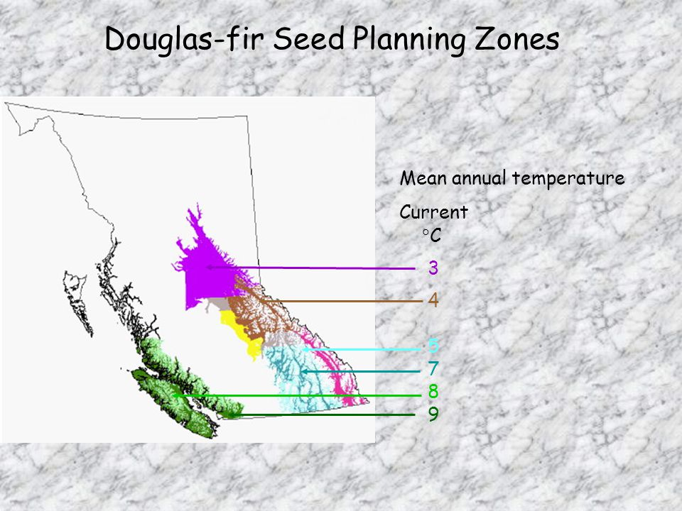 Douglas-fir Seed Planning Zones Mean annual temperature Current  C
