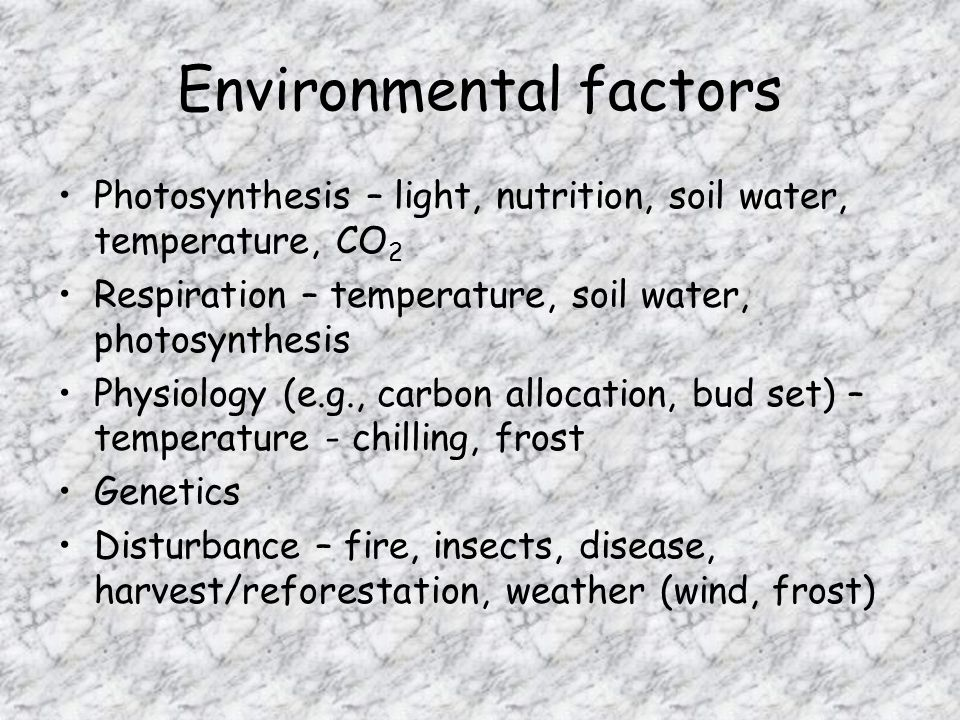 Environmental factors Photosynthesis – light, nutrition, soil water, temperature, CO 2 Respiration – temperature, soil water, photosynthesis Physiology (e.g., carbon allocation, bud set) – temperature - chilling, frost Genetics Disturbance – fire, insects, disease, harvest/reforestation, weather (wind, frost)