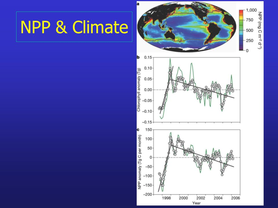 NPP & Climate