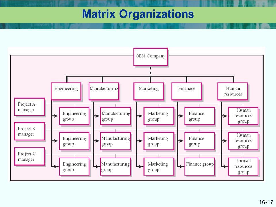 16-17 Matrix Organizations