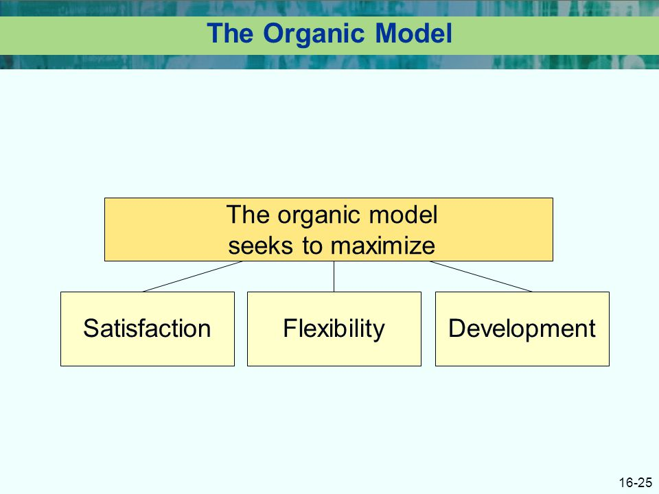 16-25 The Organic Model SatisfactionFlexibilityDevelopment The organic model seeks to maximize