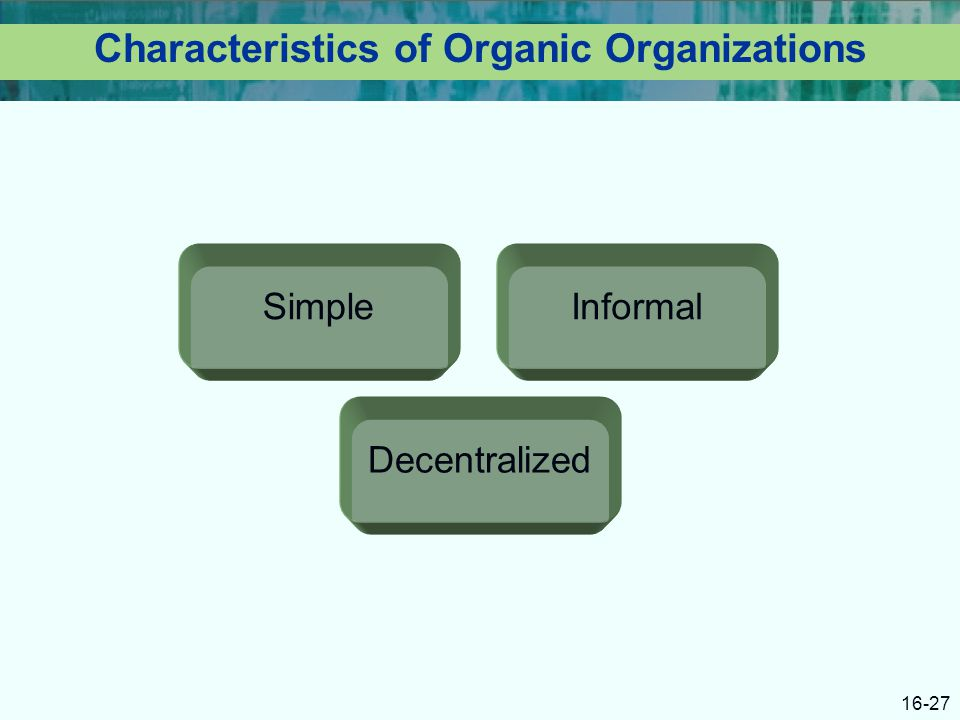 16-27 Characteristics of Organic Organizations Simple Decentralized Informal
