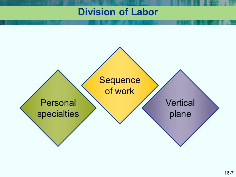 16-7 Division of Labor Personal specialties Sequence of work Vertical plane